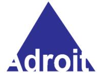 Adroit Learning Foundation Database institute in Kolkata