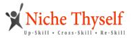 Niche Thyself Data Visualization institute in Pune