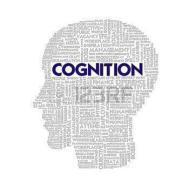 Cognition Big Data institute in Pune