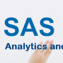 SAS Analytics and IT Services picture