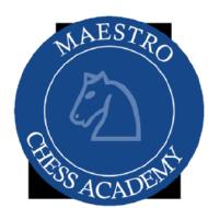 Maestro Chess Academy Chess institute in Hyderabad