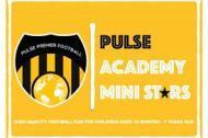 Pulse Activity Classes Dance institute in Pune