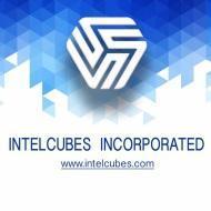 Intelcubes Incorporated Big Data institute in Pune