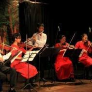 Chon V. Violin trainer in Delhi
